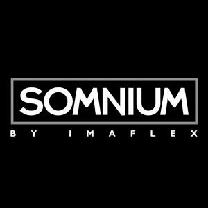 somnium_cat